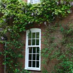 picture of new windows on a house in leicester